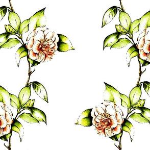Coral Camellia Kerstin's Stripe