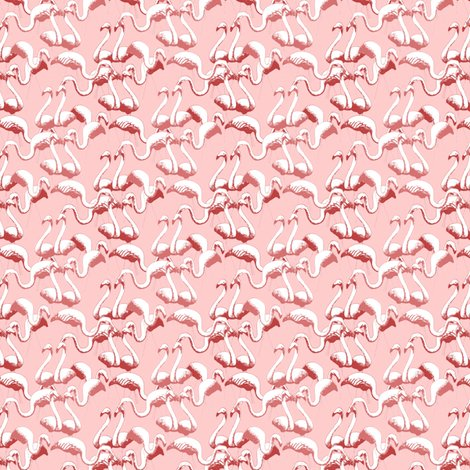 Rflamingos_shop_preview