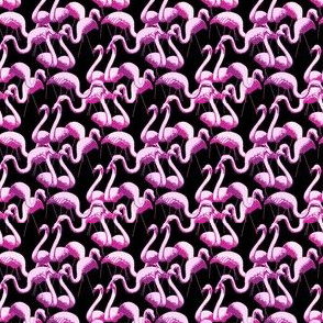 Plastic Flamingos - Black