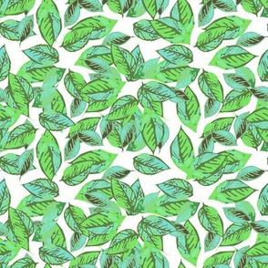 Foliage in Aqua