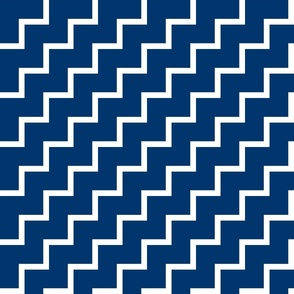 Bias Zig Zag - White on Navy