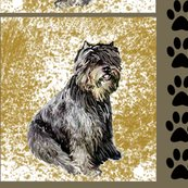 Rrbouvier_copy2_shop_thumb