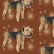 Rrrrrrlakeland_terrier_shop_thumb
