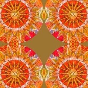 compass sun