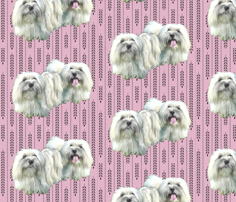 Coton De Tulear fabric by dogdaze_ on Spoonflower - custom fabric