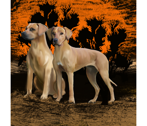 the Rhodesian Ridgeback fat quarter fabric by dogdaze_ on Spoonflower - custom fabric