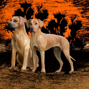 the Rhodesian Ridgeback fat quarter