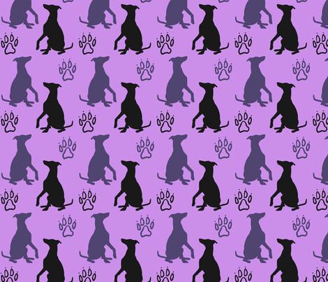 Whippet shadows - purple