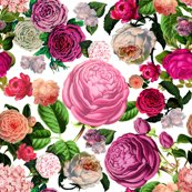 Rfloral_fabric_pattern_copy_shop_thumb
