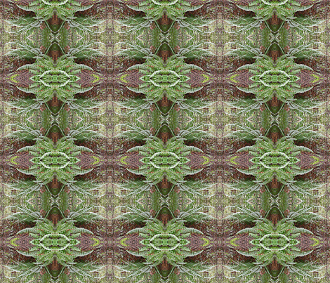 Ferns-please zoom fabric by koalalady on Spoonflower - custom fabric