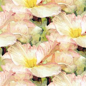 pale pink primrose