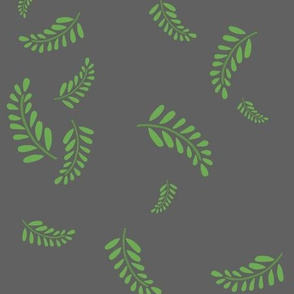 Tumbling Ferns Clay