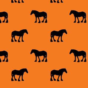 Heavy-Horse-Black-Kumquat