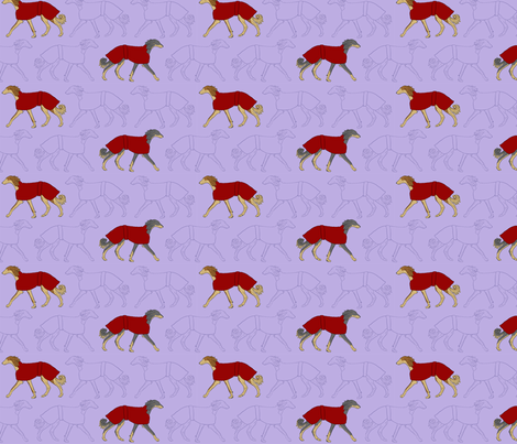 Salukis in coats - purple