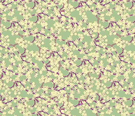 Rplum_blossoms_on_peach_ed_shop_preview