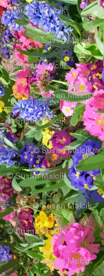 Really HUGE Flowers