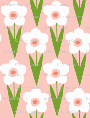 Blue_daffodil_preview