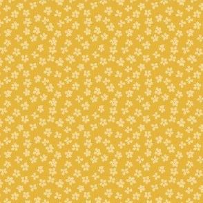 Eucalyptus seeds gold