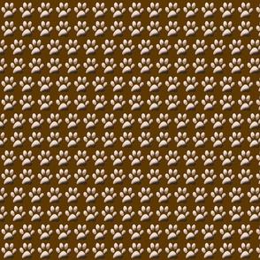 brown_pawprint_coordinate