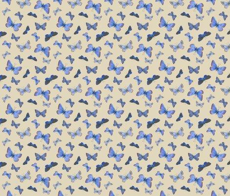 Rrr0_extinct_butterflies3b_toss_shop_preview