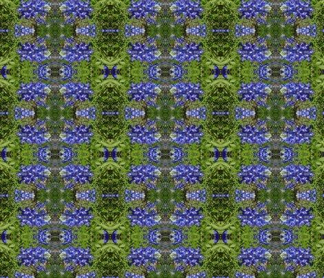 Rrimg00613-20120324-1512_shop_preview