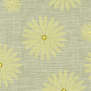 Yellow Star of Daisy