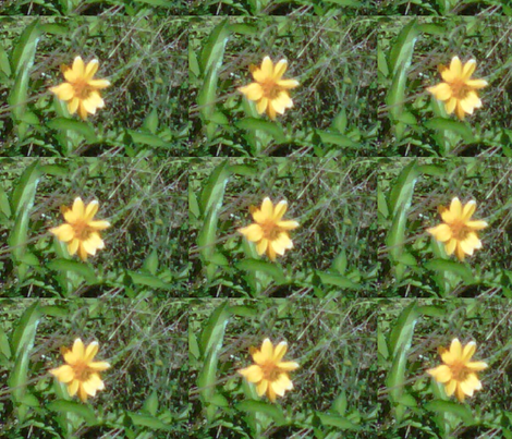 yellow flower big-ed fabric by kari's_place on Spoonflower - custom fabric