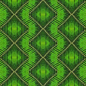 fern_fantasy_coordinate_3