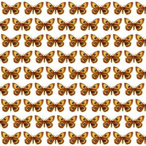 Butterfly Aglia Tau