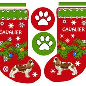 R1080745_rcavalier_stocking__shop_thumb