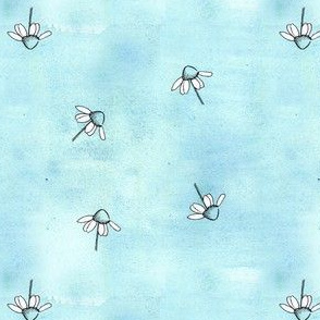 Blue Chamomile