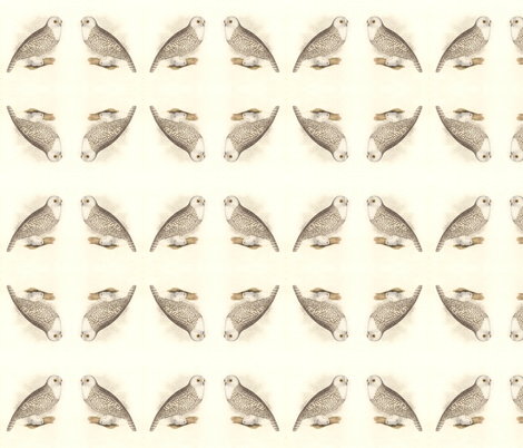 Snowy Owl - Vintage Bird / Birds of Prey Print fabric by zephyrus_books on Spoonflower - custom fabric