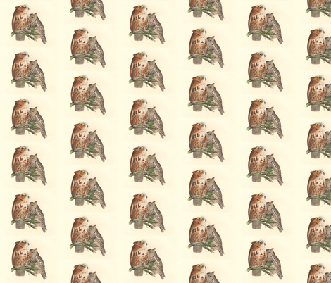 The Little Screech Owl - Vintage Bird / Birds of Prey Print fabric by zephyrus_books on Spoonflower - custom fabric