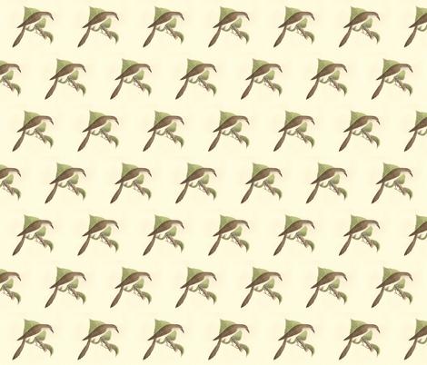 The Black-billed Cuckoo - Bird / Birds fabric by zephyrus_books on Spoonflower - custom fabric