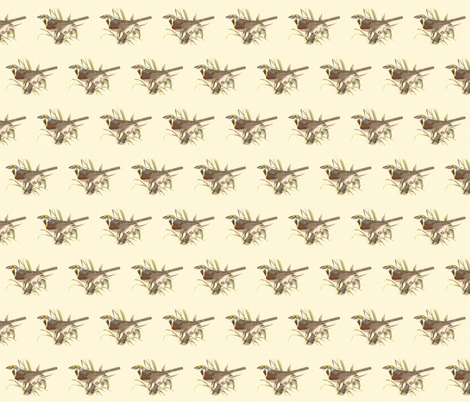 The Black-throated Bunting - Bird / Birds fabric by zephyrus_books on Spoonflower - custom fabric