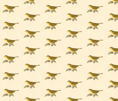 The Green Black-capped Warbler - Bird / Birds fabric by zephyrus_books on Spoonflower - custom fabric