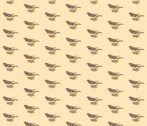 The Rose-breasted Grosbeak - Bird / Birds fabric by zephyrus_books on Spoonflower - custom fabric
