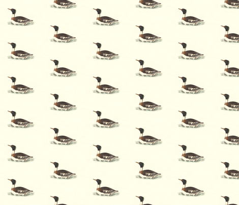 The Red-breasted Sheldrake Bird - Birds / Ducks & Geese (Goose) fabric by zephyrus_books on Spoonflower - custom fabric