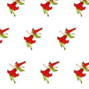 Flower Child (Children's Book) Four-O'Clock