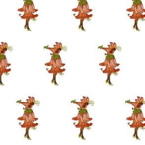 Flower Child (Children's Book) Honeysuckle