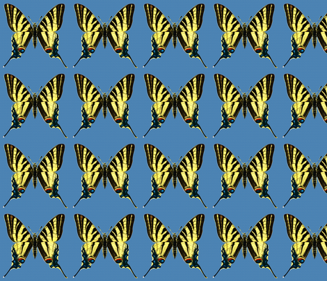 Butterfly Iphiclides podalirius fabric by zephyrus_books on Spoonflower - custom fabric