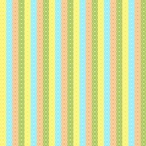 XOX Stripe (multi)