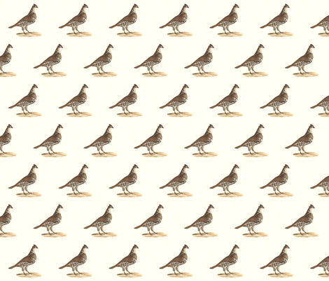 The Common Partridge - Bird / Birds fabric by zephyrus_books on Spoonflower - custom fabric
