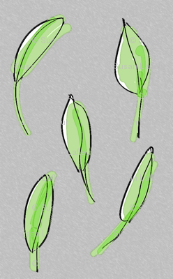 leaves-grey