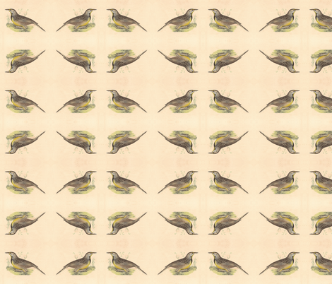 Eastern Meadowlark - Bird / Birds fabric by zephyrus_books on Spoonflower - custom fabric