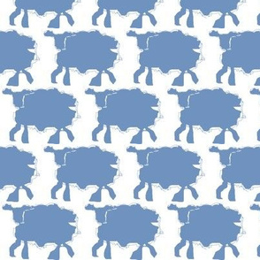 Baby Blue Sheep