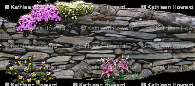 wall_trans_cart_soften_oil_3
