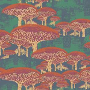 Socotra Dragon Trees Old Japan