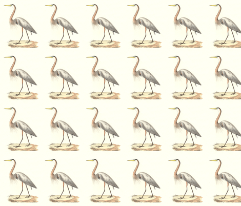 The Great Blue Heron - Vintage Bird / Birds Print fabric by zephyrus_books on Spoonflower - custom fabric