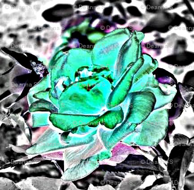 Roseygreen2